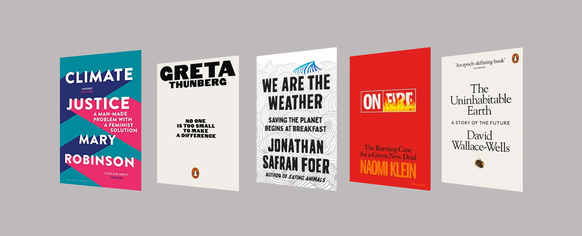 Climate Crisis Smart Thinking Books
